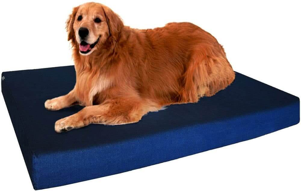 Dogbed4less Extra Large Orthopedic Memory Foam Dog Bed