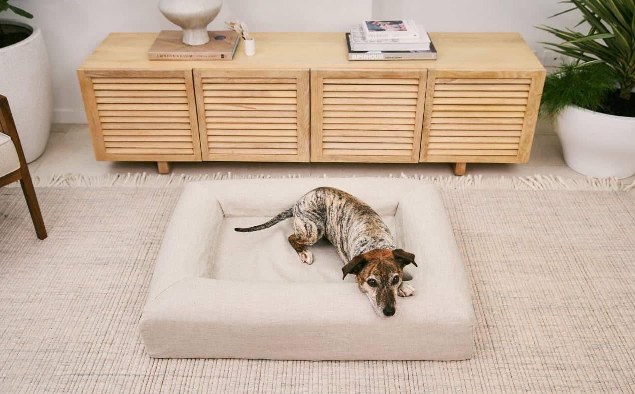 Picture of: Best Luxury Dog Beds Australia 2020 Buyer S Guide Gentledogtrainers Com Au