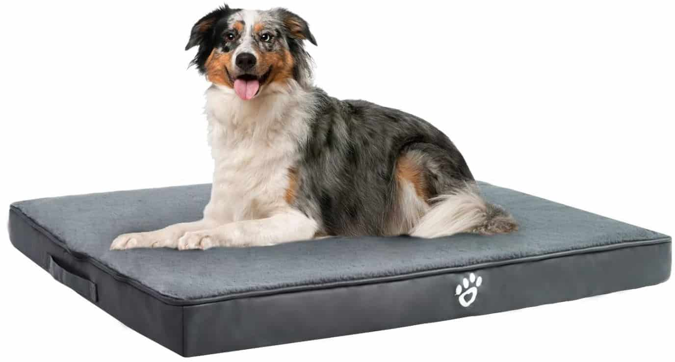 TR Pet Bed