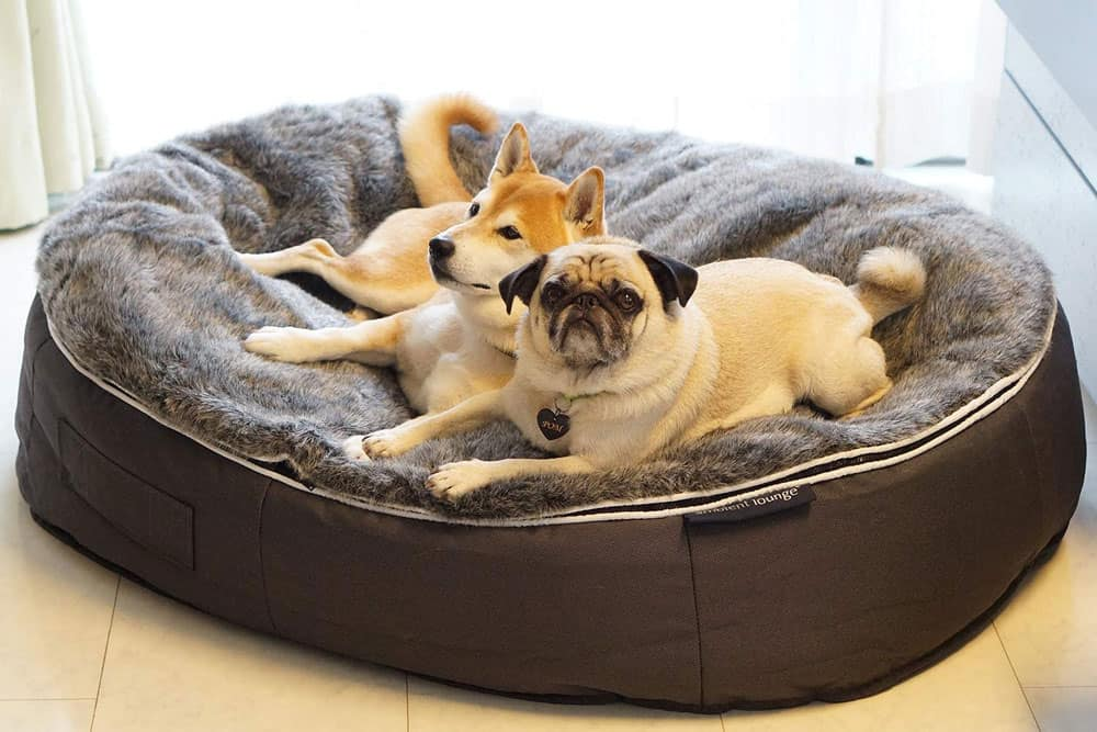 Luxury Dog Bed by Ambient Lounge