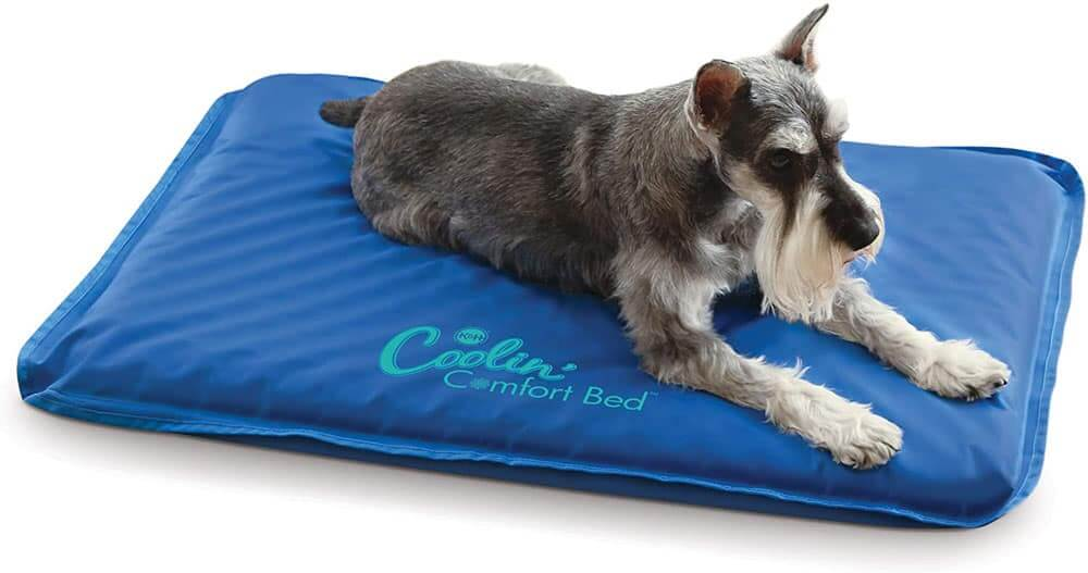 K&H-Extra-Thick-Cooling-Orthopedic-Dog-Bed
