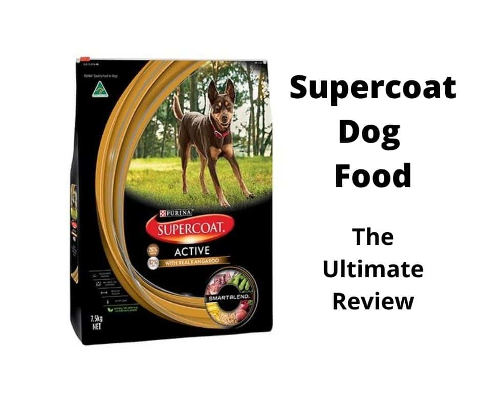 Supercoat Dog Food Review