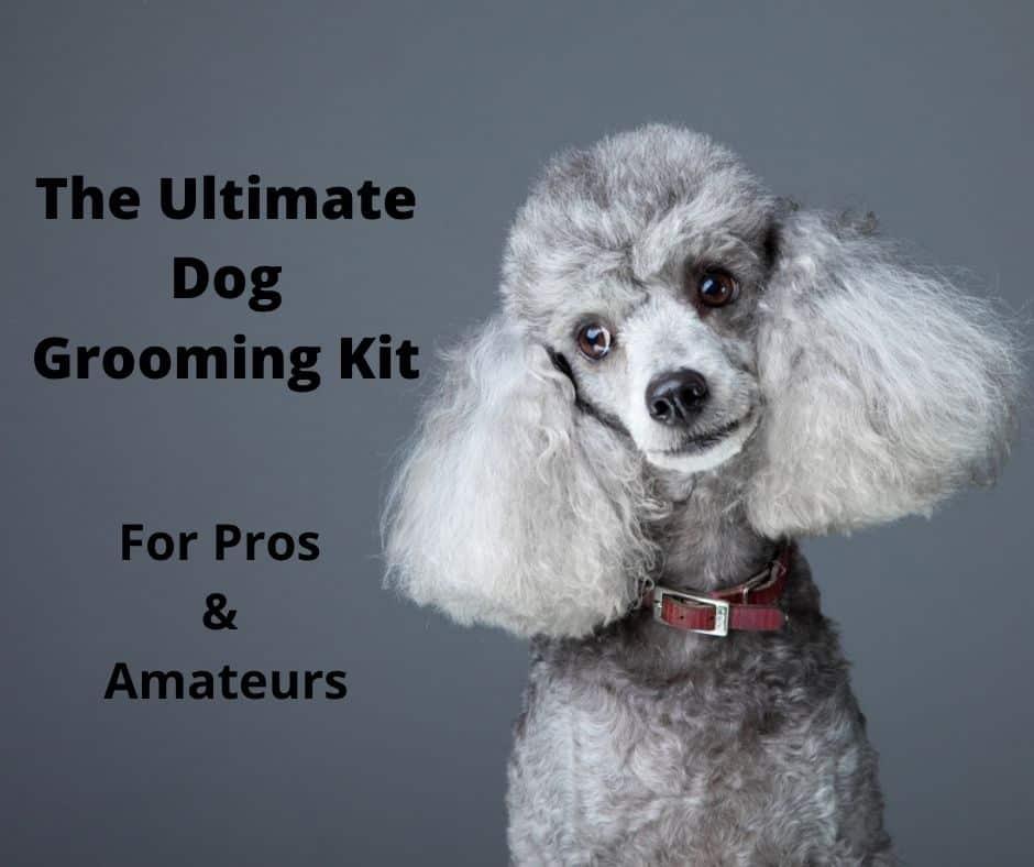 dog grooming kit options