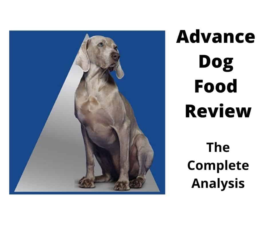 Advance Dog Food