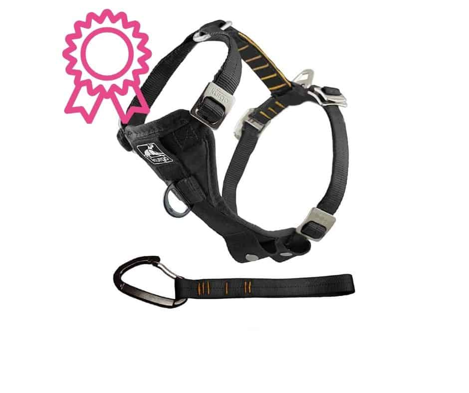 Best Dog Car Harness  2020 Buyers Guide