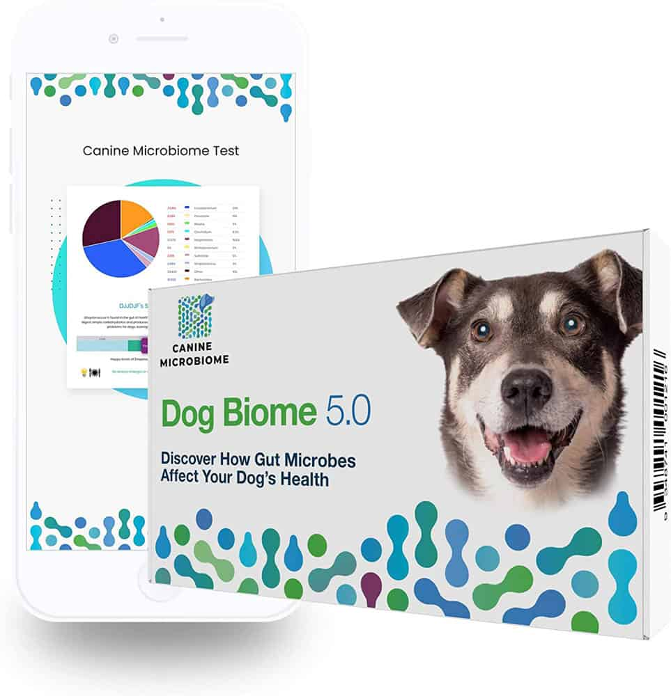 Orivet Dog DNA Test for Gut Microbiome Dog Biome 5.0