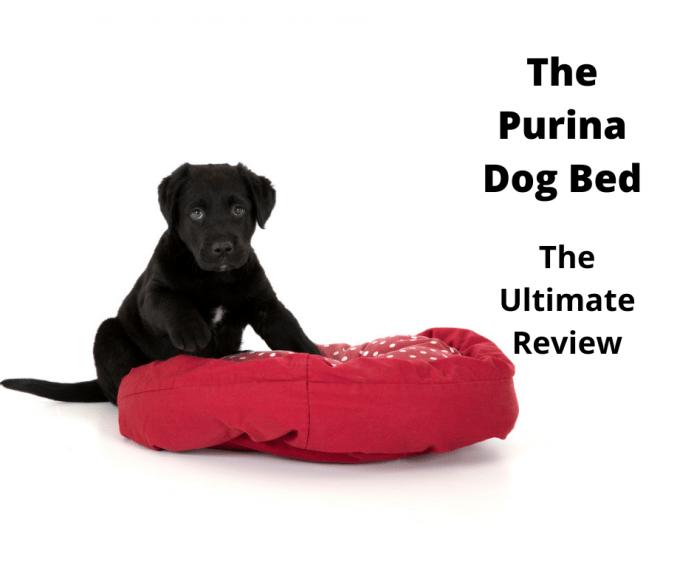 Purina Dog Bed