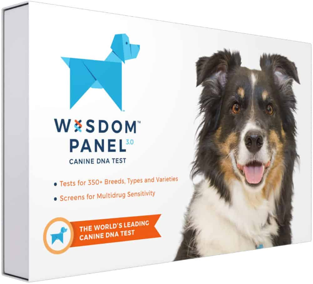 Wisdom Panel 3.0 Dog DNA Test Kit for Breed and Ancestry Information