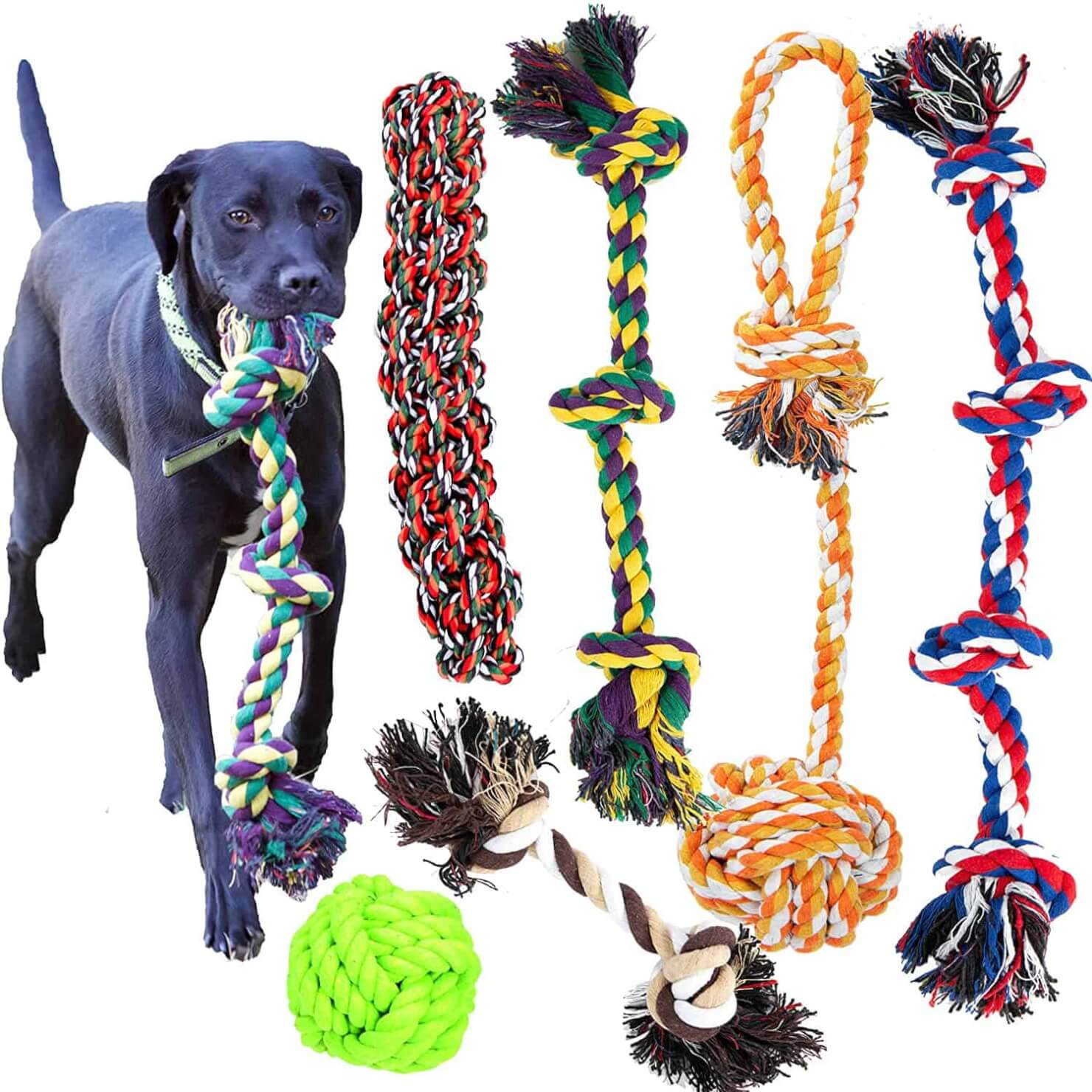 Youngever 6 Pack Dog Rope Toys