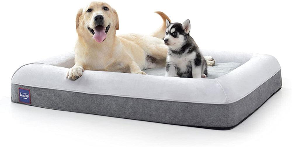 LaiFug Memory Foam Waterproof Dog Bed