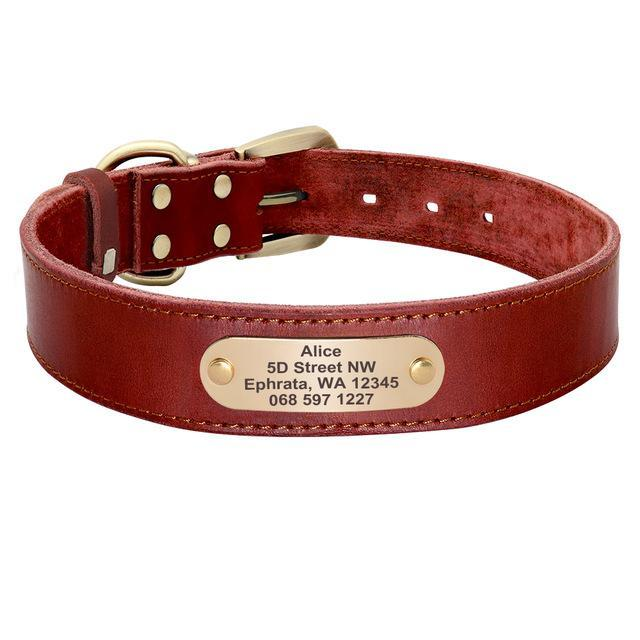 Sirius Genuine Leather Dog Collar Personalised